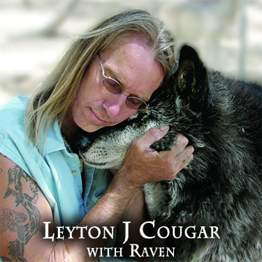 Leyton Cougar with Raven