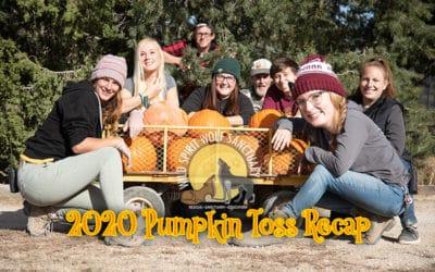 2020 Pumpkin Toss Enrichment Recap