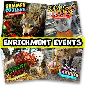 Enrichment Events